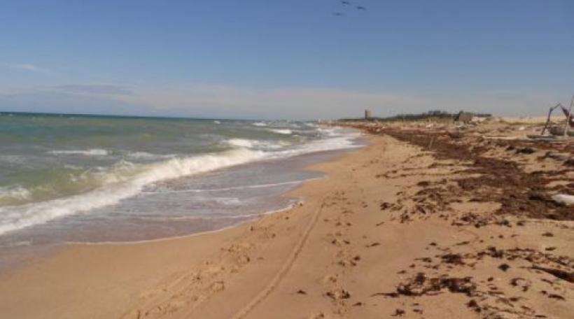 Planean invertir en cordon litoral