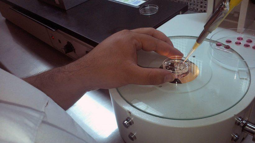 Fertilización invitro en Tamaulipas pretende generar más de mil embriones mensaual.